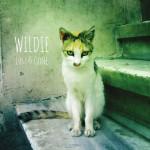 wildie